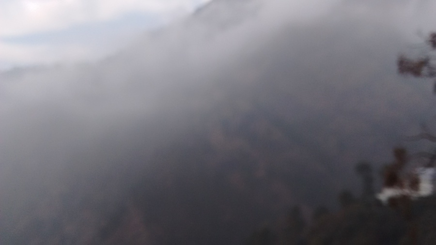 Dense Fog on the way to Vaishno Devi Temple, Katra, Jammu